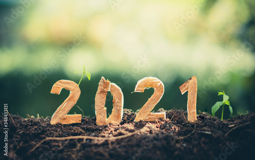 Obraz Happy New Year 2021 social media video.2020-2021 change background new year resolution concept.wood text on ground.Perfect for your invitation or office card - fototapety do salonu