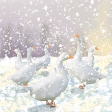 White Geese In The Snow