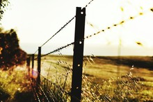 Barbed Wire Fence On Field Against Sky