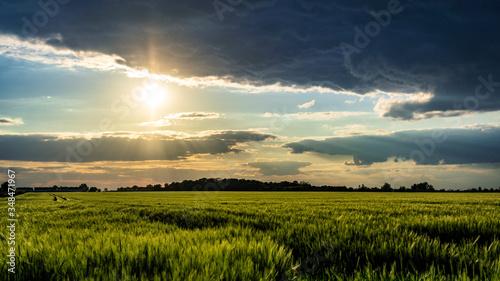 Krajobraz wiejski zachód słońca pole