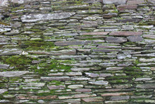Close-up Of Moss On Stone Wall
