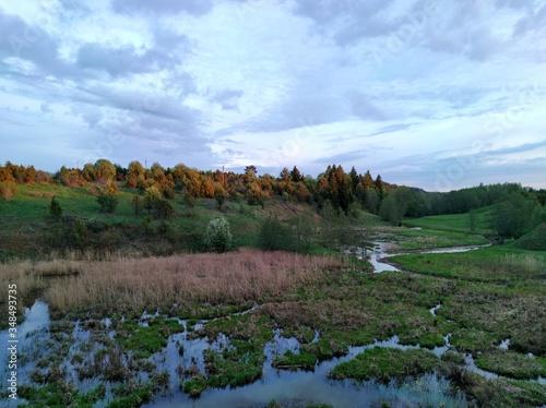 beautiful evening sky over marshland and a wooded slope Slika na platnu