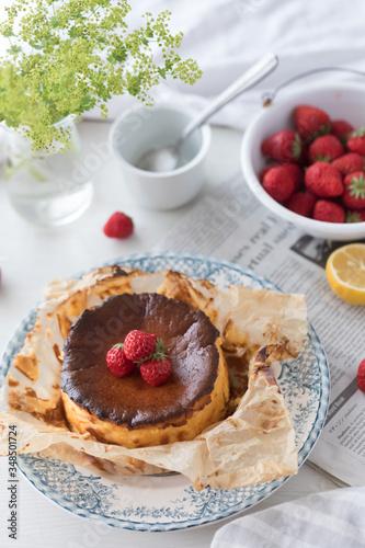 バスクチーズケーキ Canvas Print