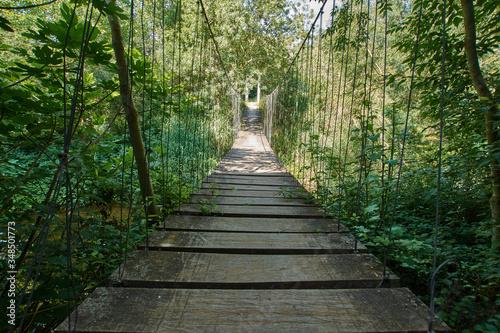 puente colgante en la vegetación verde encima del rio