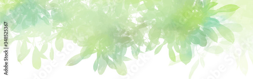 Fototapeta Watercolor with green leaves background, Nature concept, vector. obraz