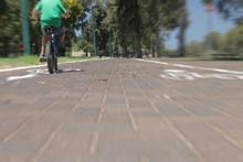 Rear View Of A Boy Riding Bicy...