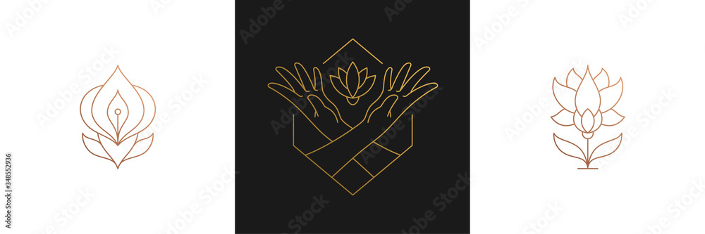 Fototapeta Vector line feminine decoration design elements set - flowers and female gesture hands illustrations linear style