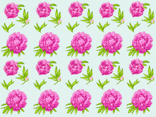 Seamless Vector Pink Peonies Pattern And Blosom Flowers On Splash Background. Floral Element For Wedding And Invitation Cards, For Valentine Cards And Prints