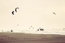 Kites Gliding Over Sea