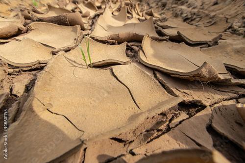 Fotografía The drought causes the soil to break.