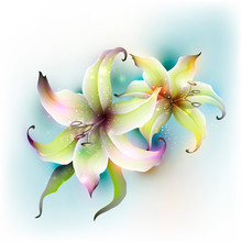 Floral Abstract Background Wit...