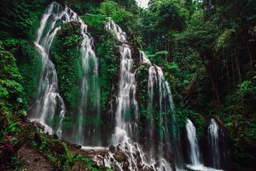 Fototapeta Wodospad Cascade waterfalls in tropical rain forest at Bali