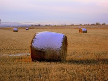 Hay Bales With Snow On Field Against Sky