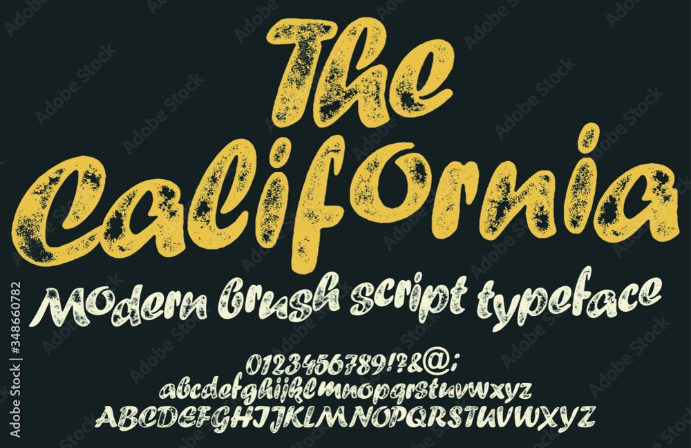 Fototapeta Vintage brush script lettering font, handwritten calligraphic alphabet. Textured unique brush in alphabet style. Vector Illustration.