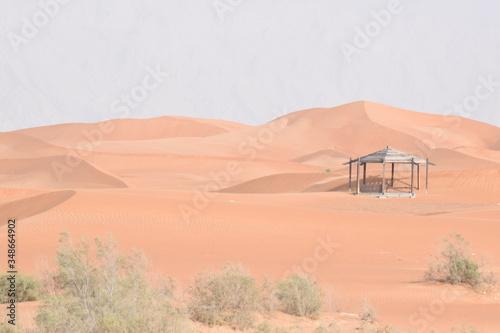 Red Sand dunes in Al Ain,UAE. Canvas Print