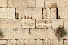 Detail Of Western Wall In Jerusalem Old City, Israel