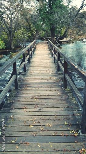 Empty Footbridge Over River Against Trees Tapéta, Fotótapéta