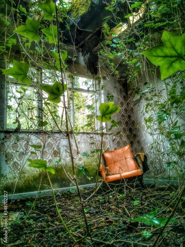 Fotografie, Obraz Orange Chair By Ivies In Abandoned House