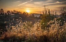 Autumn Landscape At Sunrise Wi...