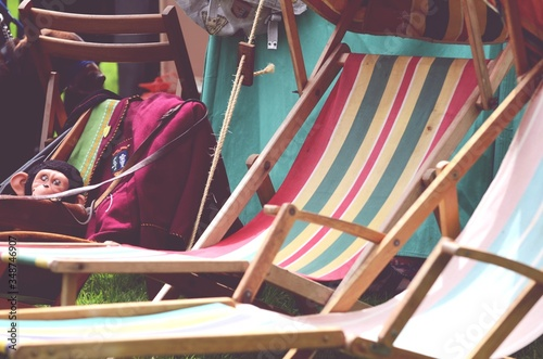 Fotografiet Deck Chairs On Field