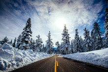 Winter Road With Snow And Pine Trees In Lake Tahoe