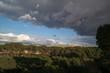widok niebo chmury las drzewa widok