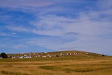 Rural Landscape Scene With Trd...