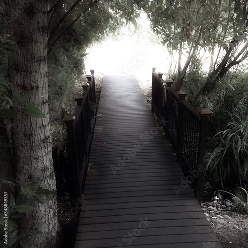 Photo High Angle View Of Footbridge