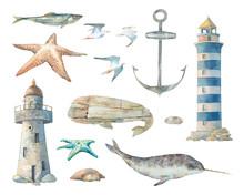 Nautical Set: Narwhal, Sea Sta...