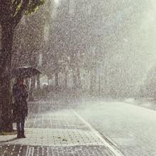 Person Standing Under Tree Holding Umbrella On Rainy Day