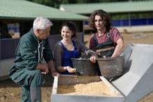 Apprentice With Senior Farmer ...