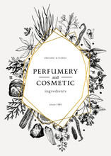 Hand Drawn Perfumery And Cosmetics Ingredients Vintage Flyer. Decorative Background With Aromatic Plants, Fruits, Spices, Herbs For Perfumerywith Golden Foil Border