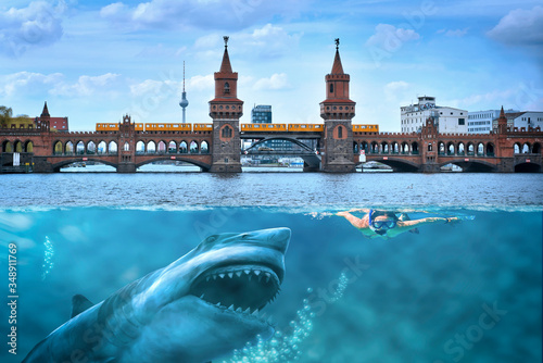 Obraz na plátně Hai in Berlin greift Schwimmerin an
