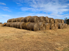 Large Supply Of Hay Bales