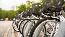 Rowery Miejskie - Park -  Wypożyczalnia-