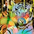 Leinwandbild Motiv Tigre colorata