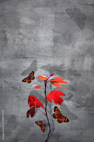 Branch with red leaves and  beautiful butterfly at concrete background Canvas Print