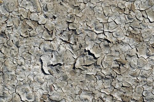 Obraz na plátne Dürre