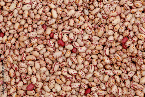 Valokuvatapetti legumes with many borlotto beans impossible to count exactly
