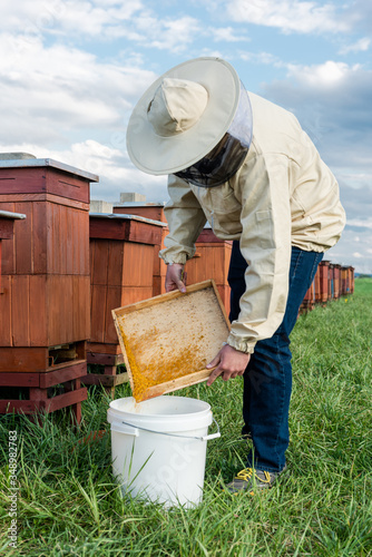 Photo Beekeeper or Apiarist Collecting Pollen from Beehive