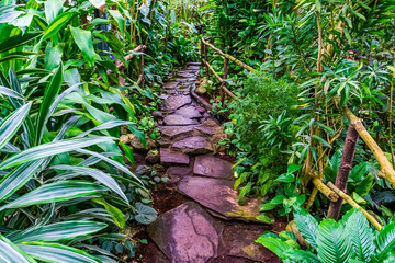 Panel Szklany Ogrody beautiful stone path with flowing water in a tropical garden, modern natural architecture