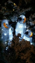 Illuminated Penguin Sculptures...
