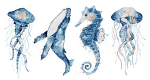 Set Of Sea Animals. Blue Water...