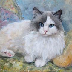 Fototapeta Zwierzęta Portrait of a ragdoll cat, oil painting