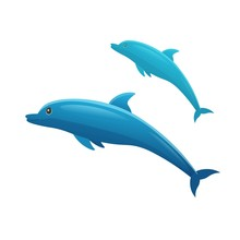 Cartoon Dolphins On A White Ba...