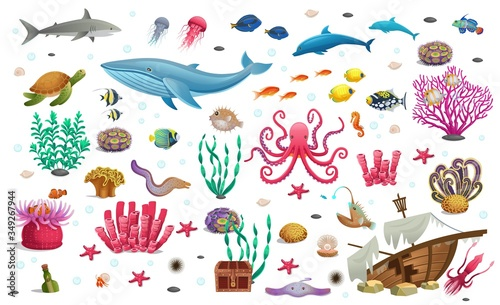 Big set of coral reef with algae tropical fish, a whale, an octopus, a turtle, jellyfish, a shark, an angler fish, a seahorse, a squid and corals Canvas Print