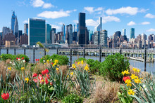 Colorful Plants And Flowers At Gantry Plaza State Park In Long Island City Queens With The Manhattan Skyline In The Background