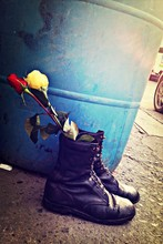 Close-up Of Roses In Boots