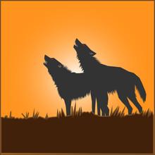 Illustration Of Animal Design ...