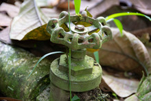 Close Up View Of A Rusty And Old Shut Off Valve In The Middle Of A Forest Path